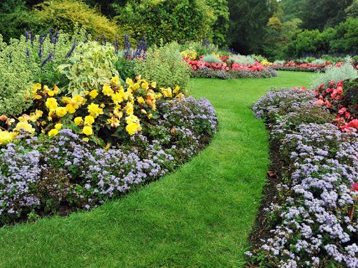 Full Garden Makeover