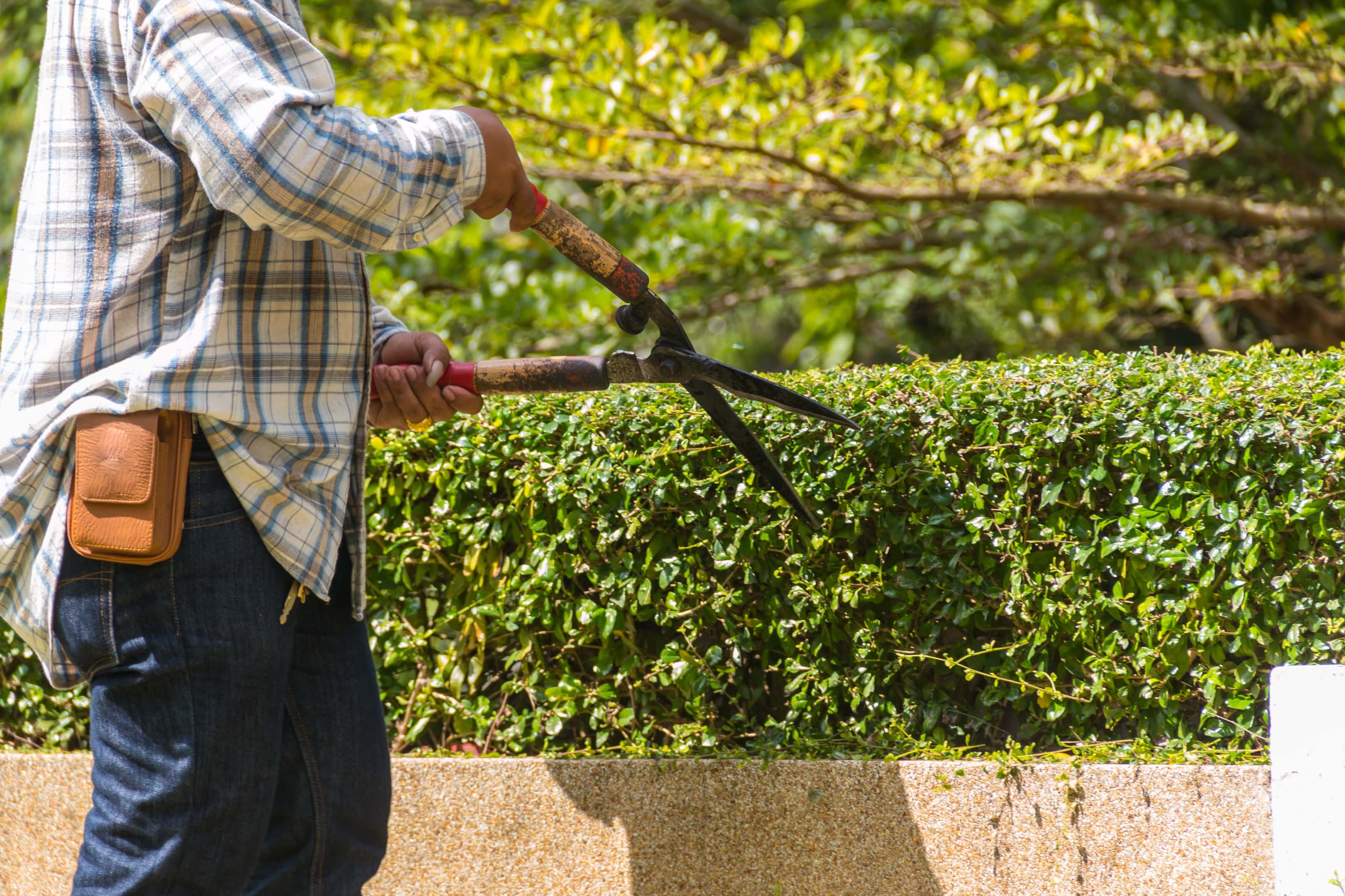 Hedge Reductions