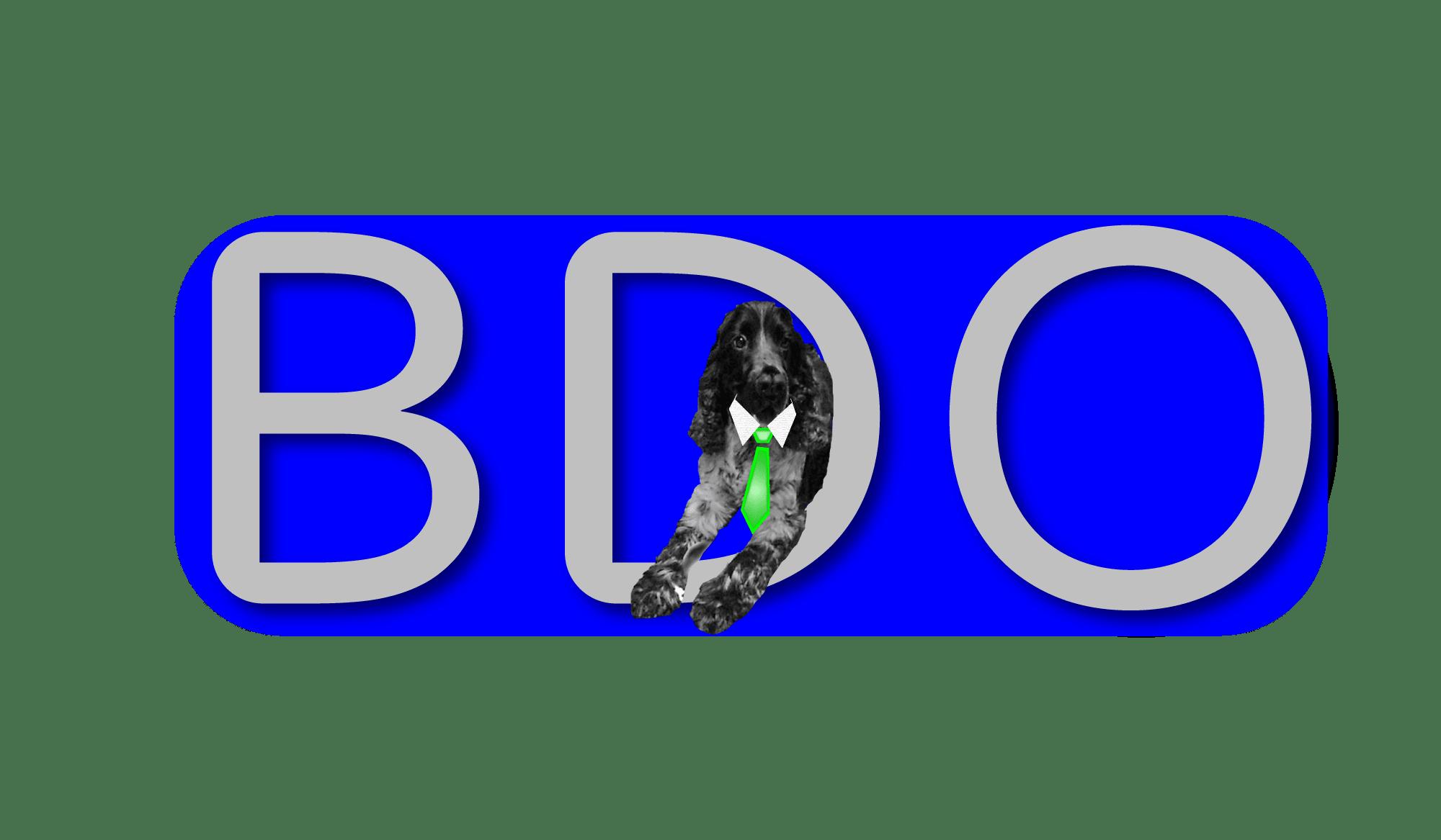 Big Dog Outreach