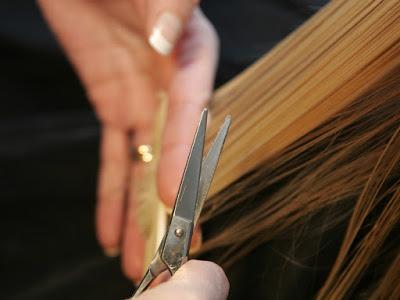 Ladies' Haircut