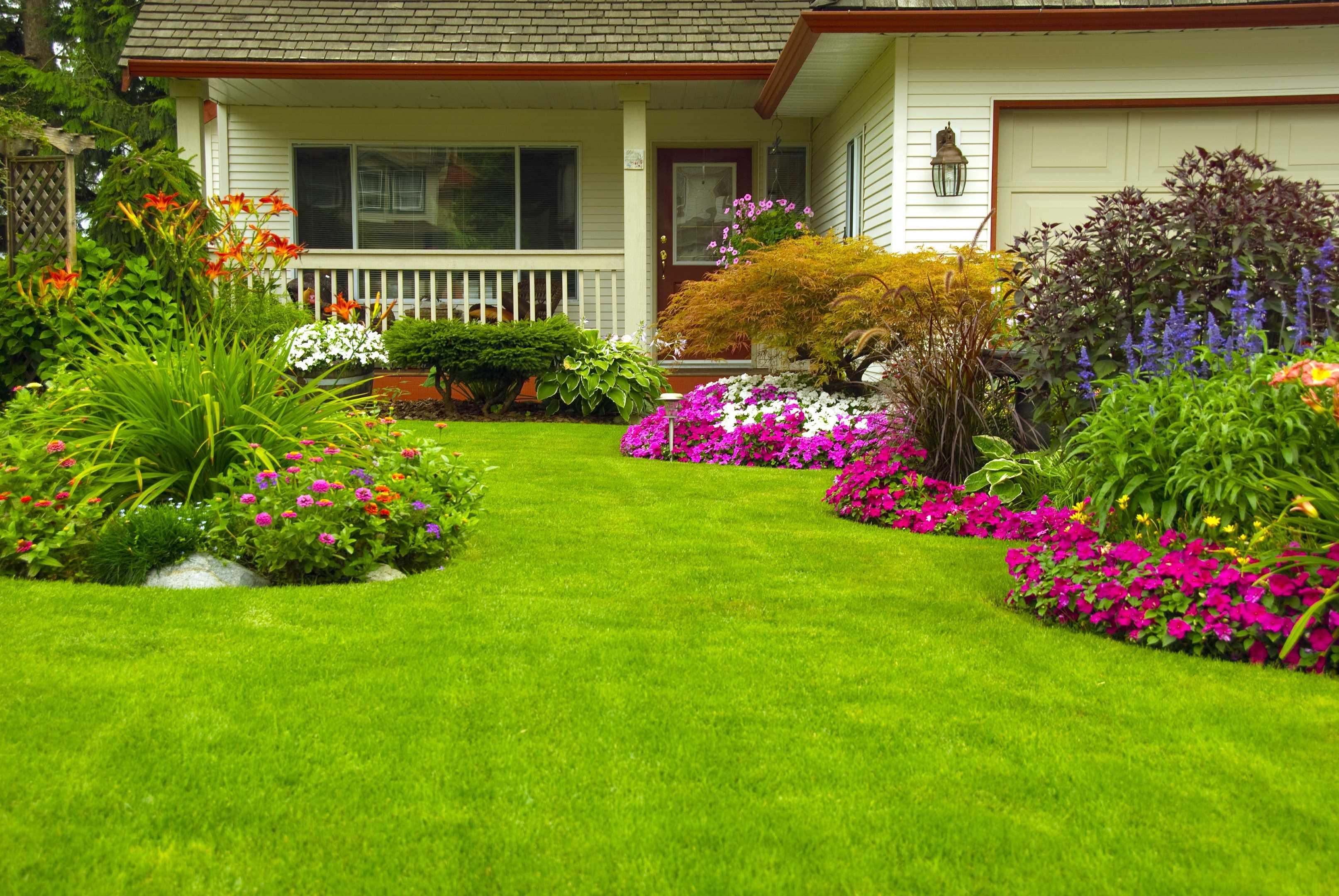 Maintenance/Lawn Care