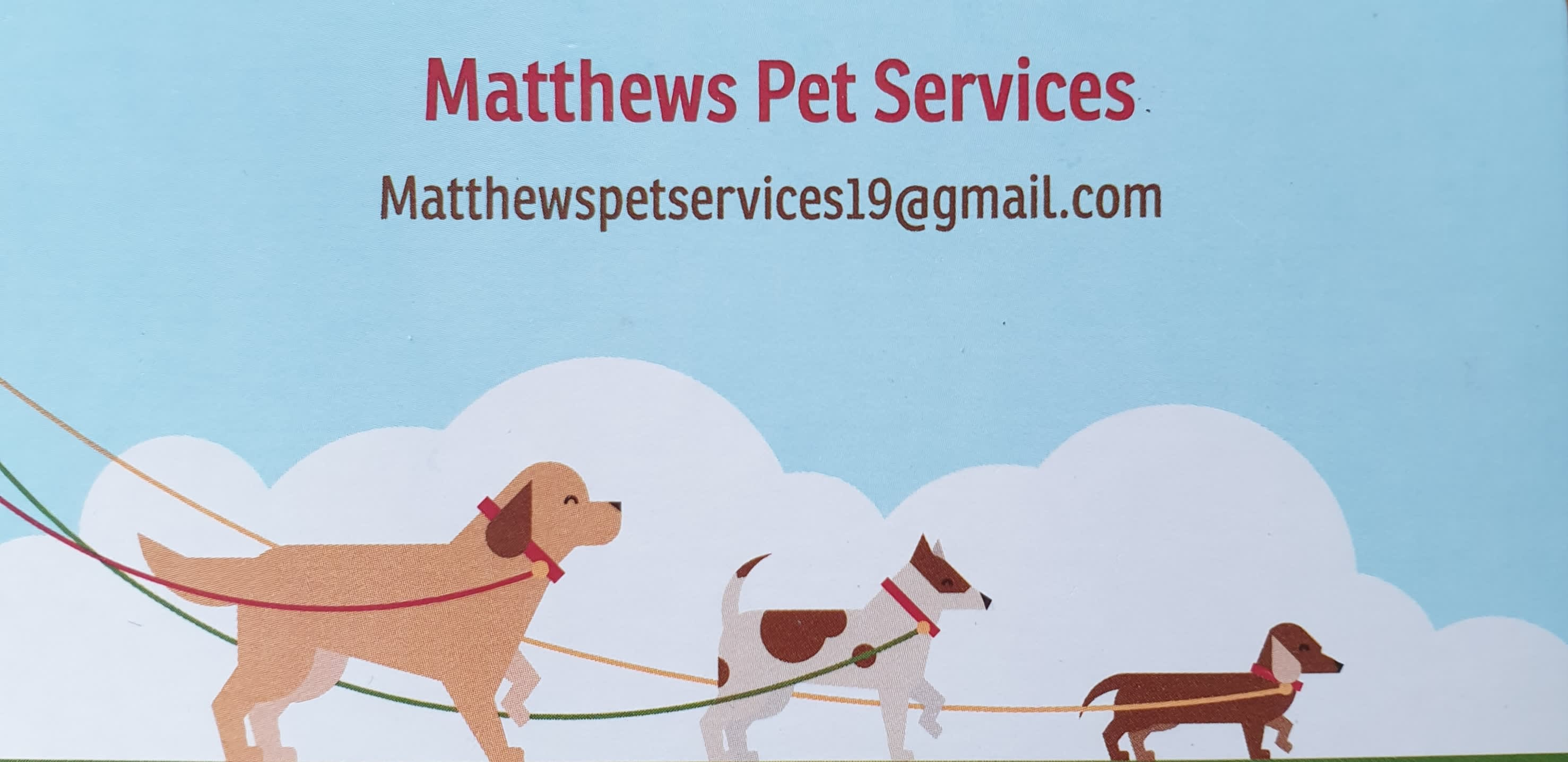 Matthew's Pet Services