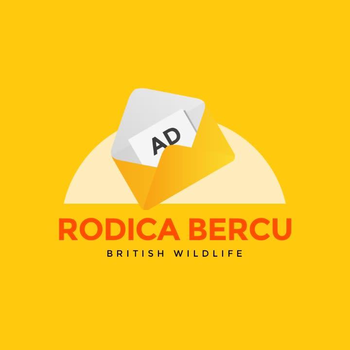 Rodica Bercu Health Ltd