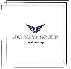 Hawkeye Group