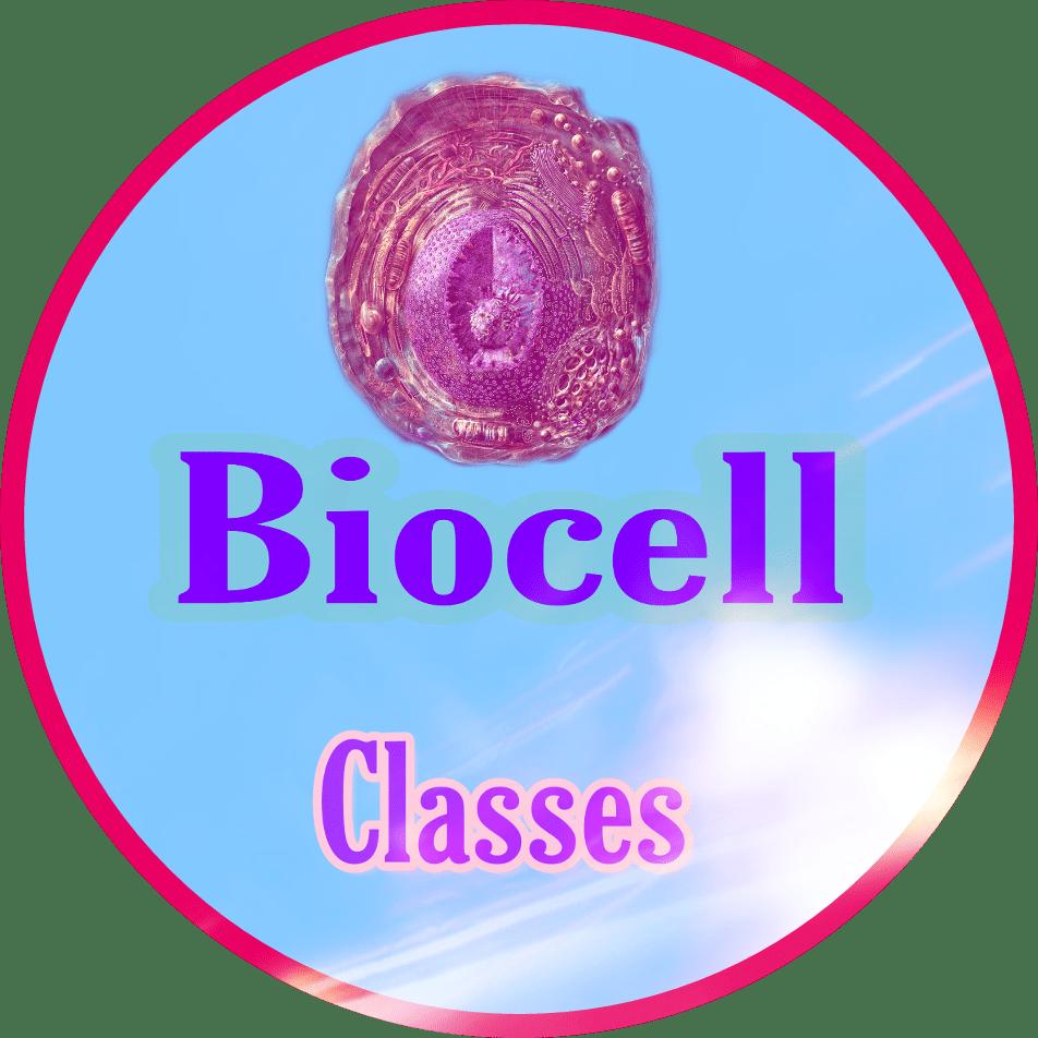 Biocell classes