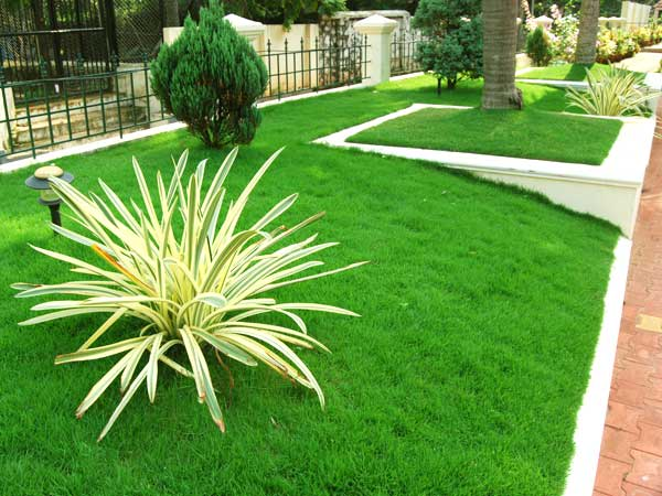 Lawn and Stone Garden