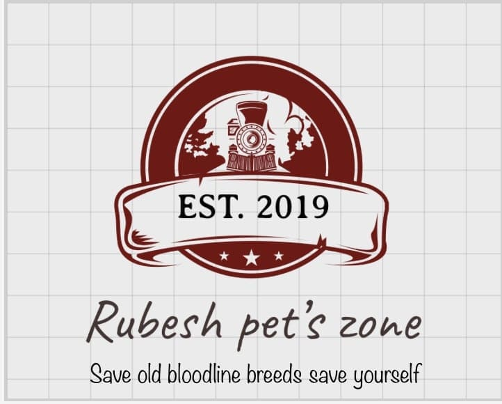 Rubesh Pet's Zone