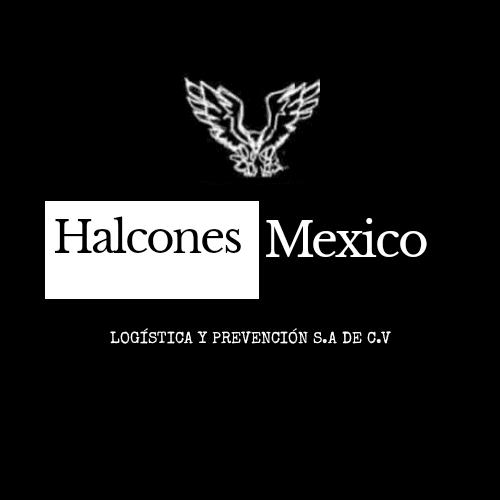 Halcones México Logística y Prevención S.A de C.V