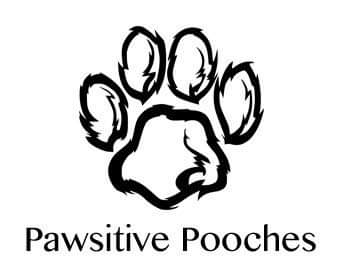 Pawsitivity Pooches Dog Walking Service