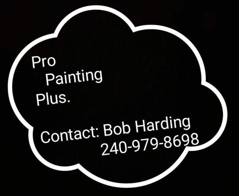 Pro Painting Plus