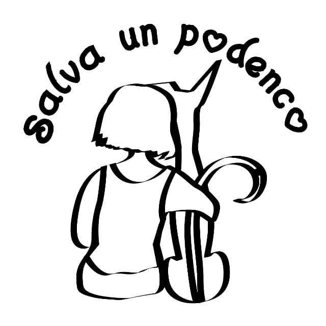 Salva Un Podenco Gran Canaria