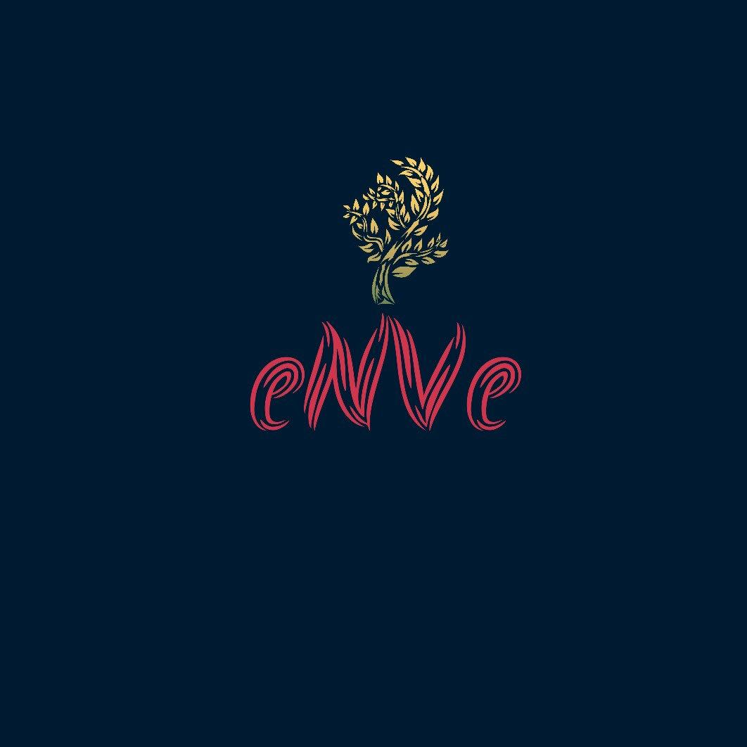Enve Group
