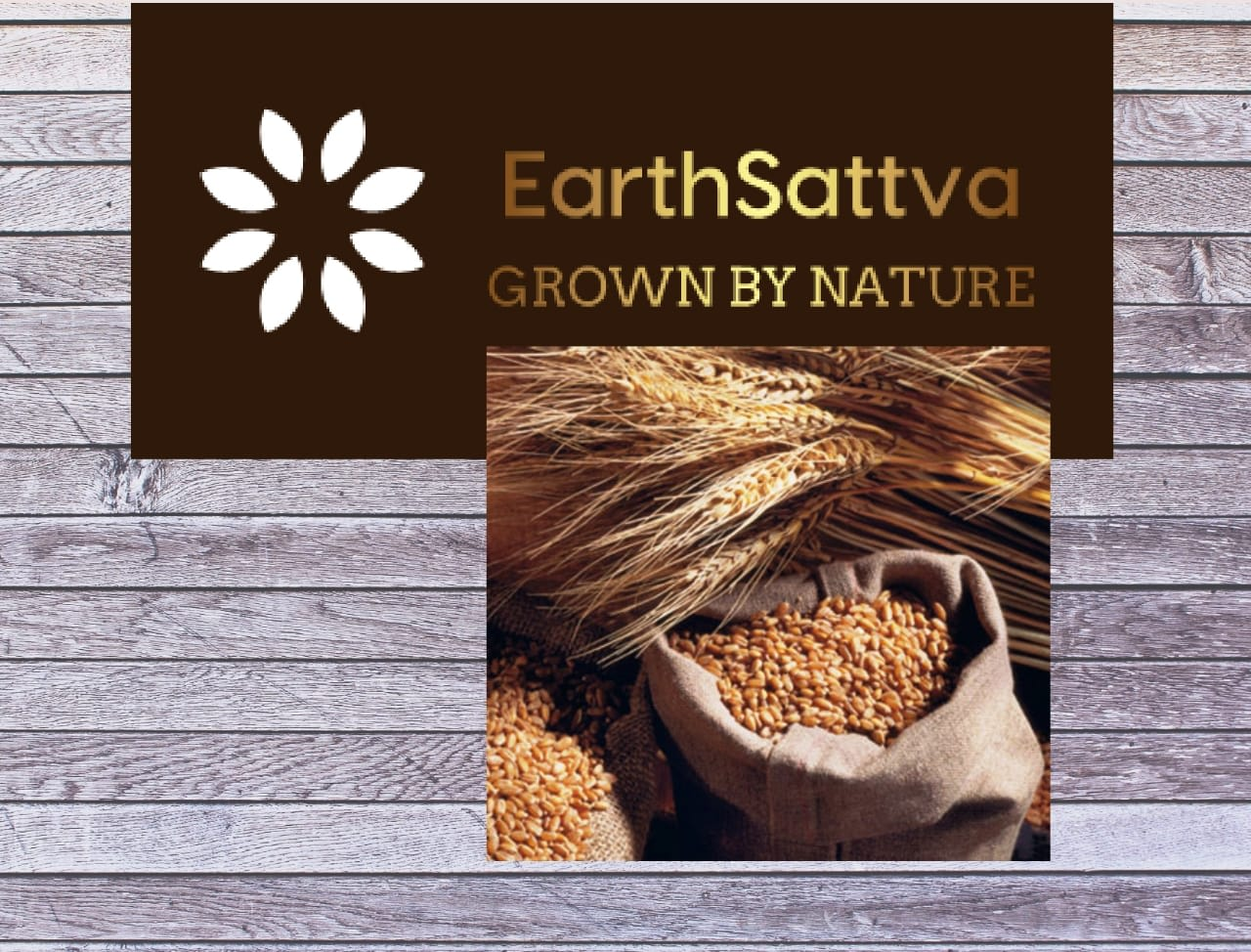 Earth Sattva