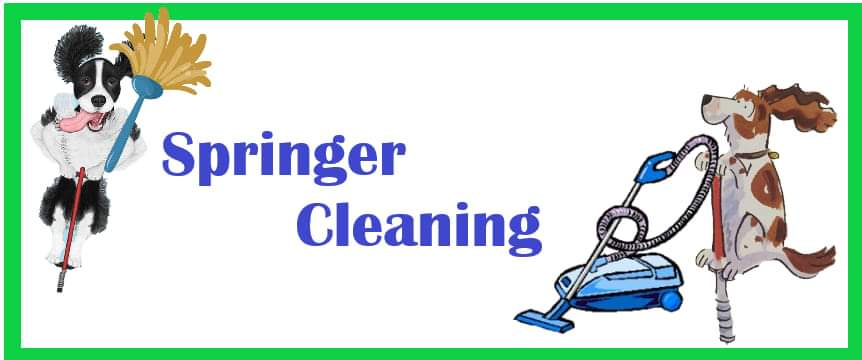 Springer Cleaning