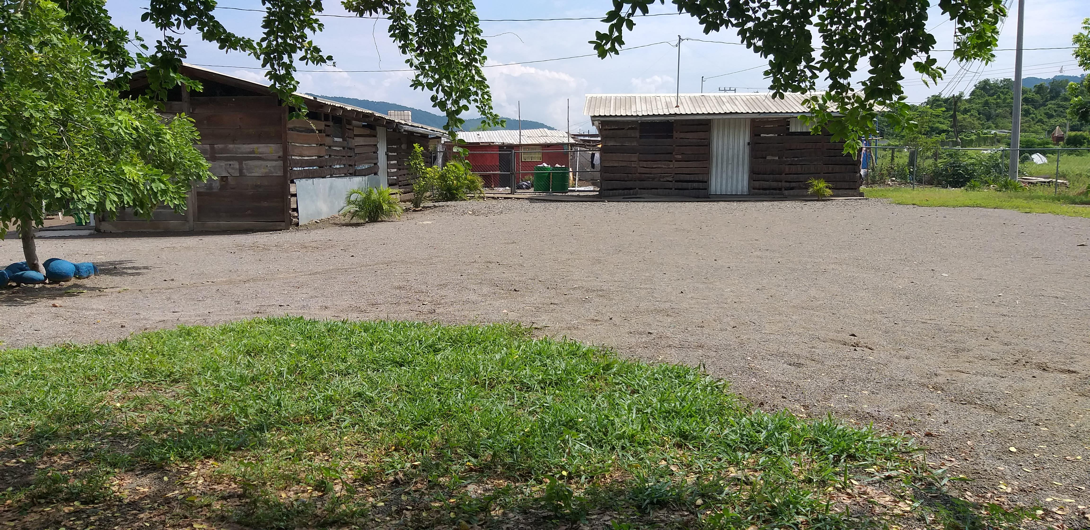 """Escuela """"Nueva Manitoba En Mexico"""""""