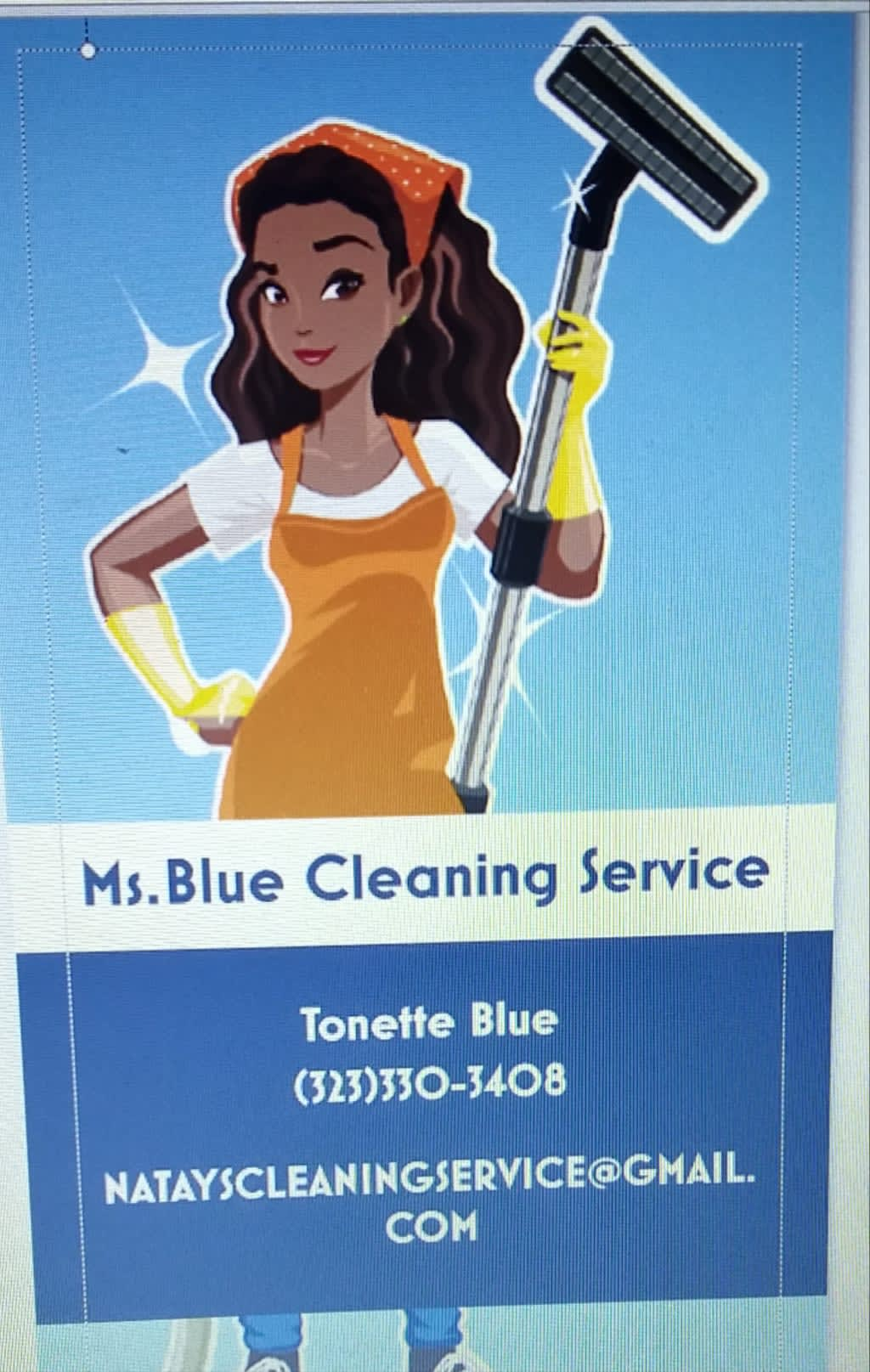 Ms. Blue Cleaning Service