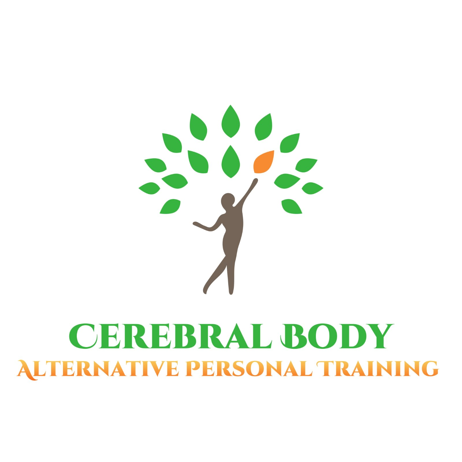 Cerebral Body LLC