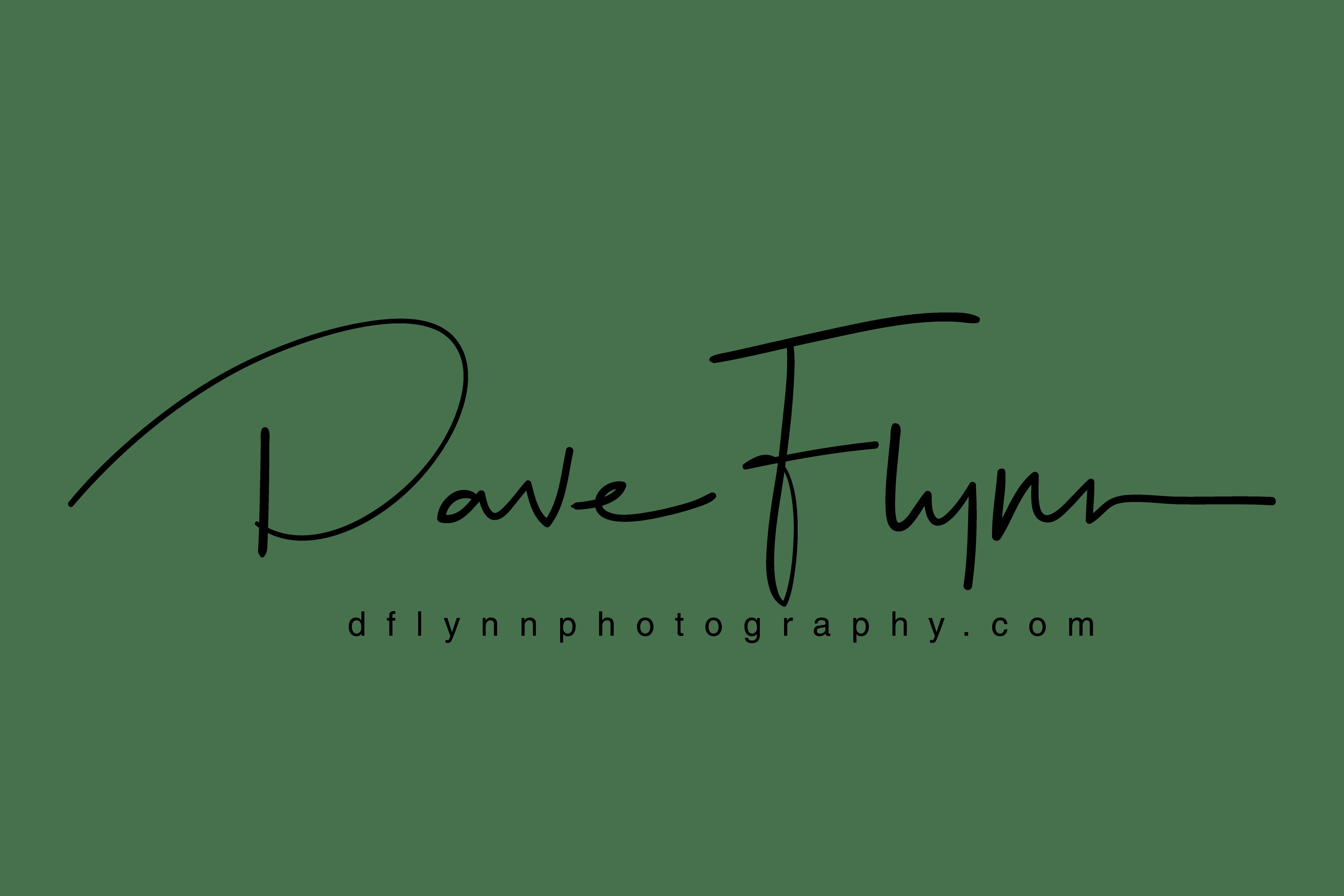 Dave Flynn Photography