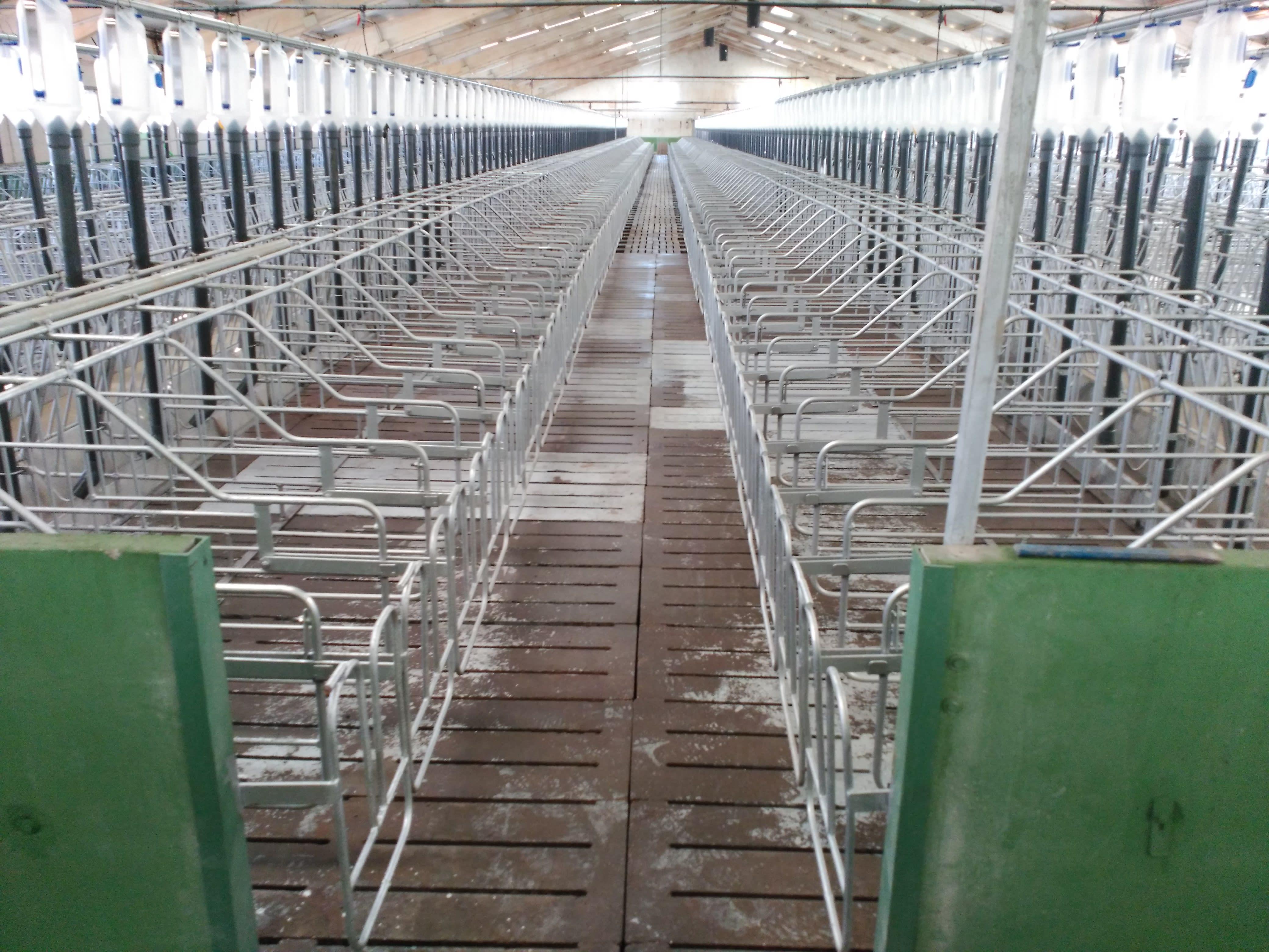 Construcción de instalaciones agropecuarias