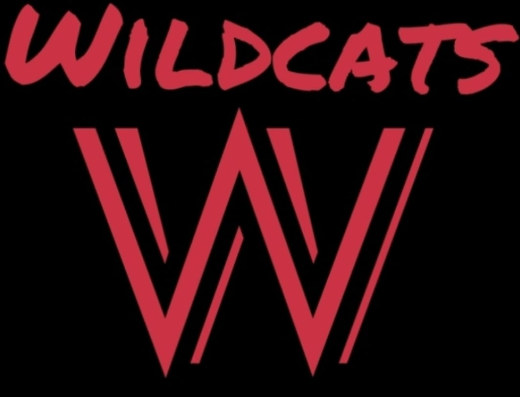 Wildcats Montreal Basketball