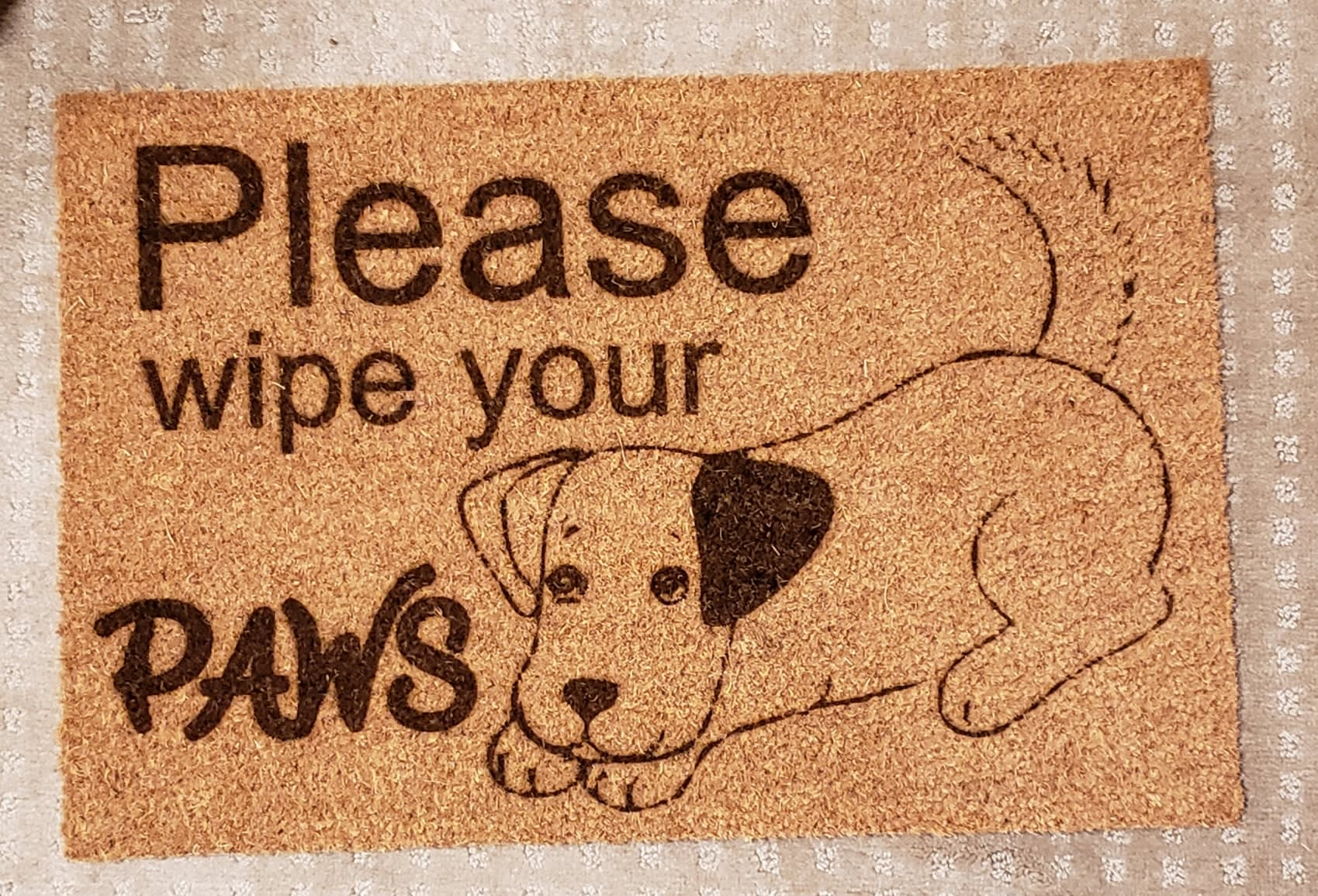 Please wipe your Paws 24x35