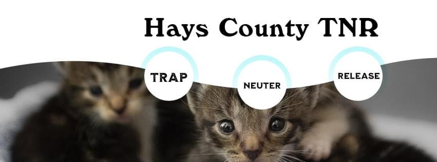 Hays County Community Cats & TNR Assistance