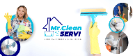 Mr. Cleanservi