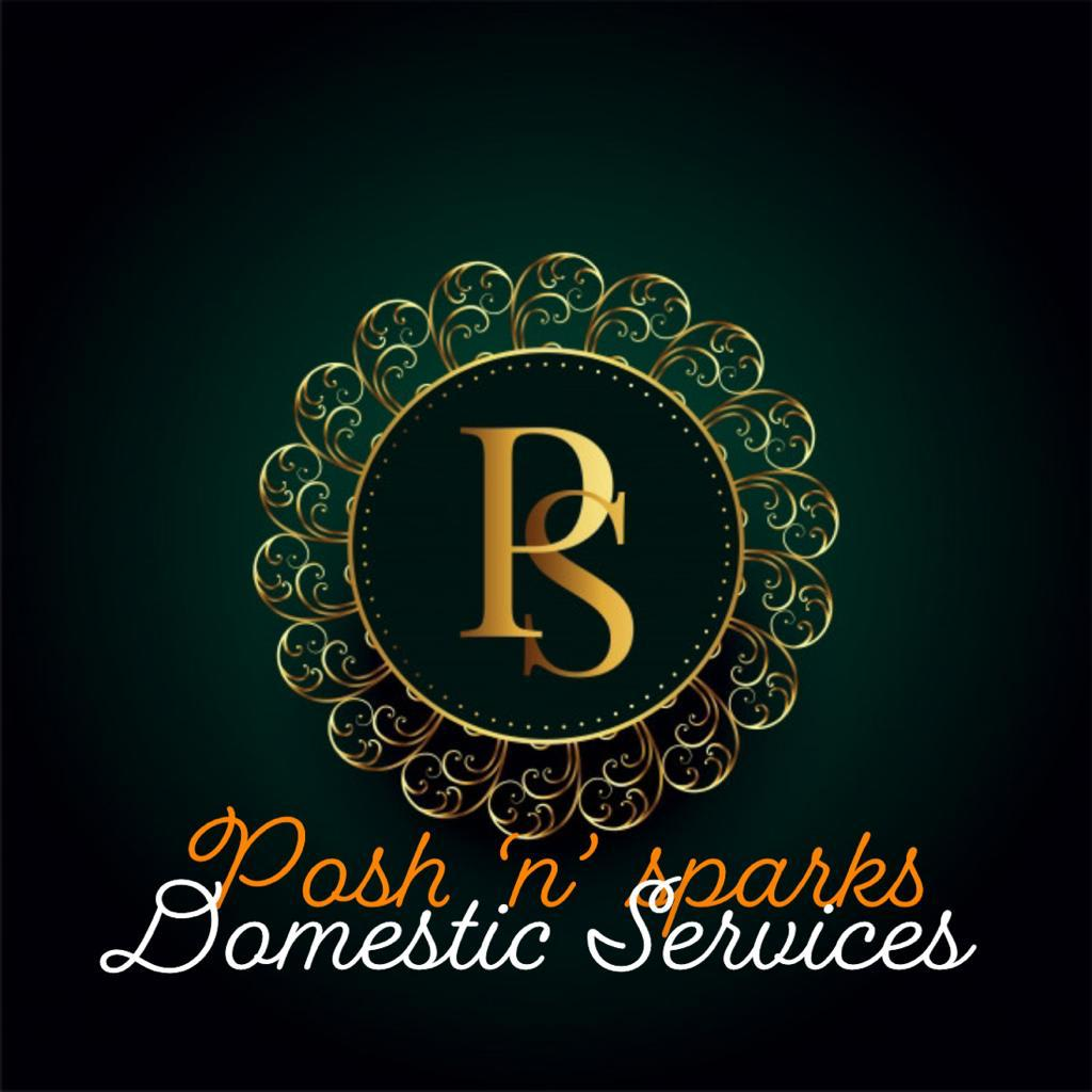 Posh 'n' Sparks Domestic Services