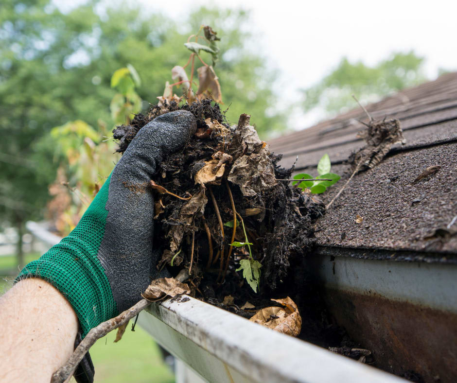 Fishers Indiana Gutter Cleaning Service