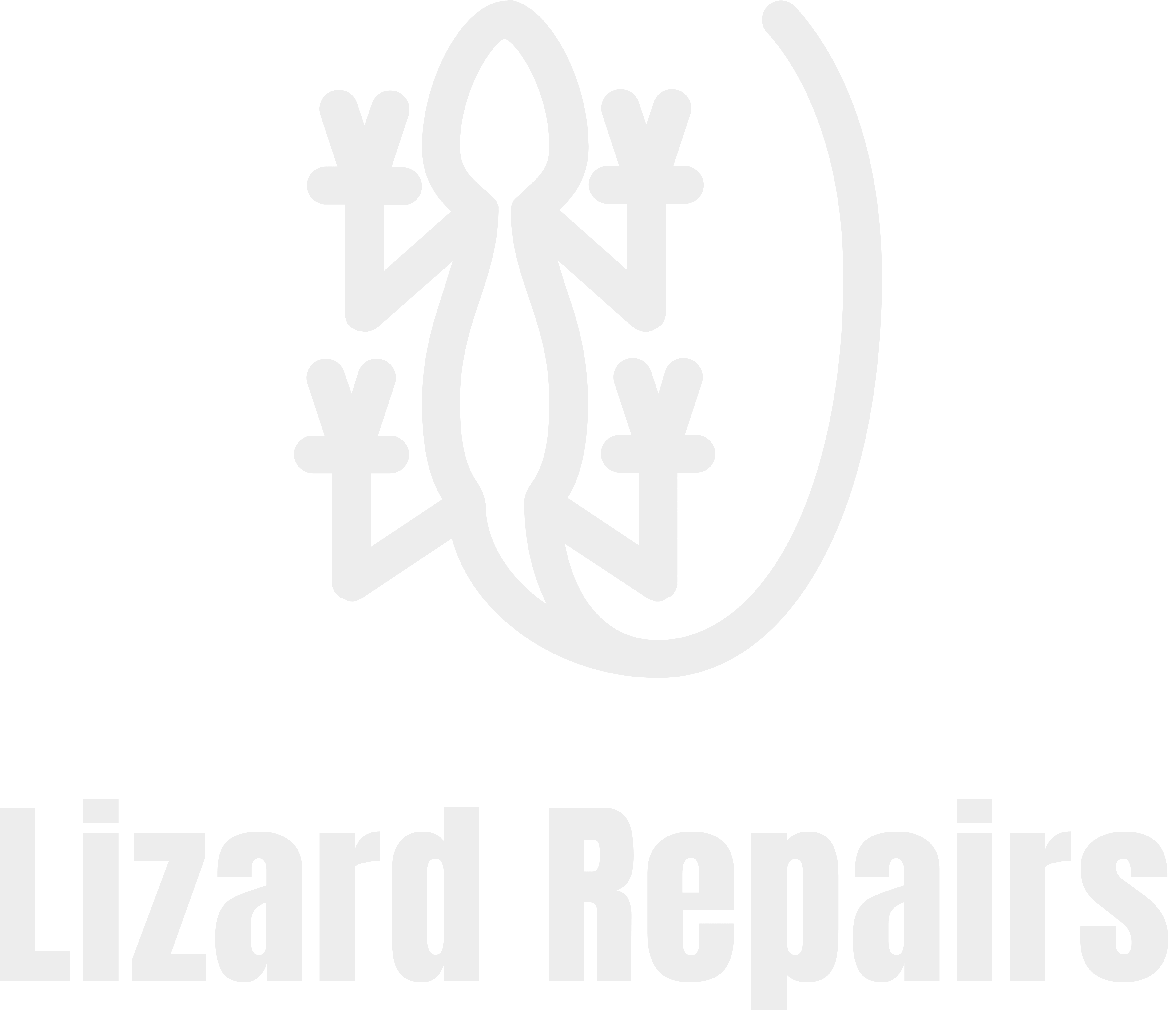 Lizard Repairs